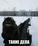 avatar_Partizan