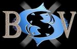 avatar_BSV